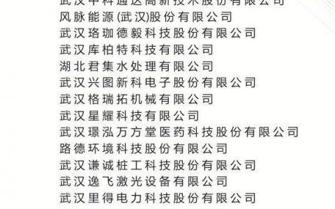 """湖北省第一批""""科创板种子""""企业名单"""