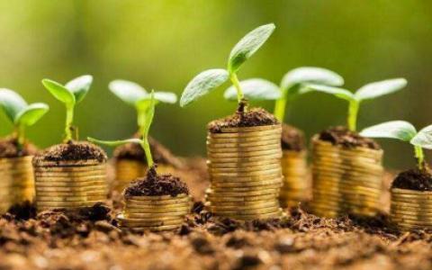 投资贵金属怎样才能抓住机遇?