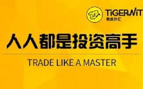 老虎外汇用科技改变外汇交易