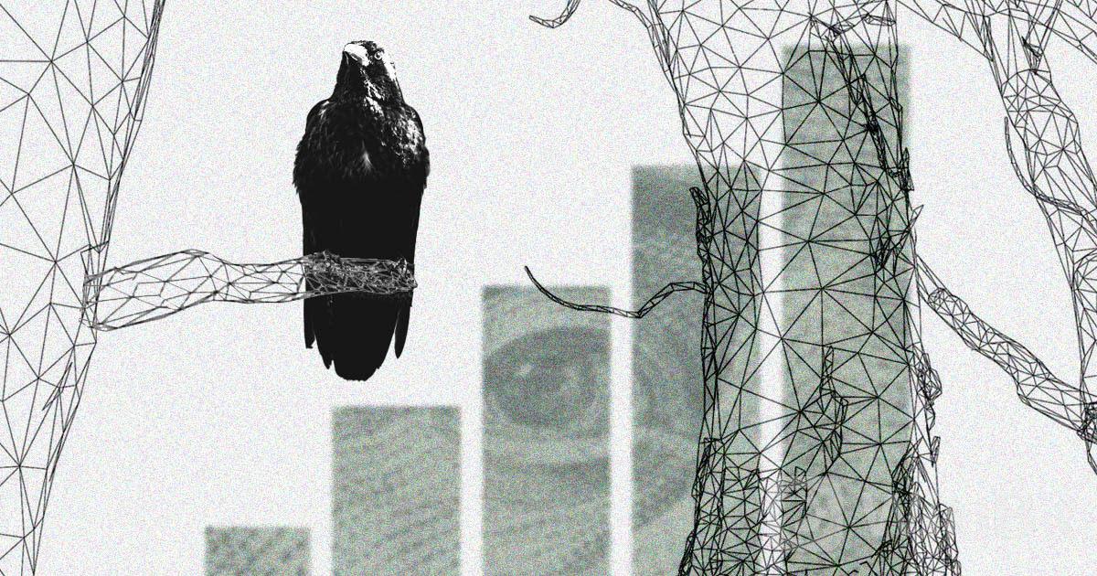 Kusama-recent-50-surge-developments-future_social.jpg
